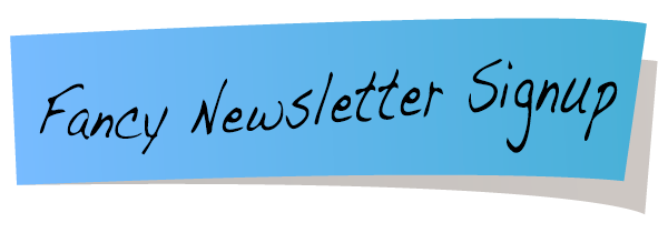Fancy Newsletter Signup